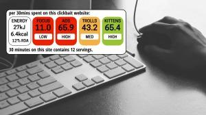 An imaginary wellbeing assessment for a website