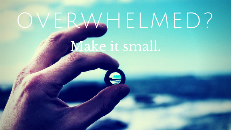 Overwhelmed? Make it small.
